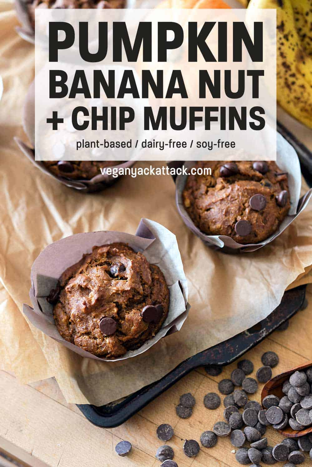 Top-down picture of Pumpkin Banana Nut Muffins with Chocolate Chips in large paper liners on a parchment-line baking sheet