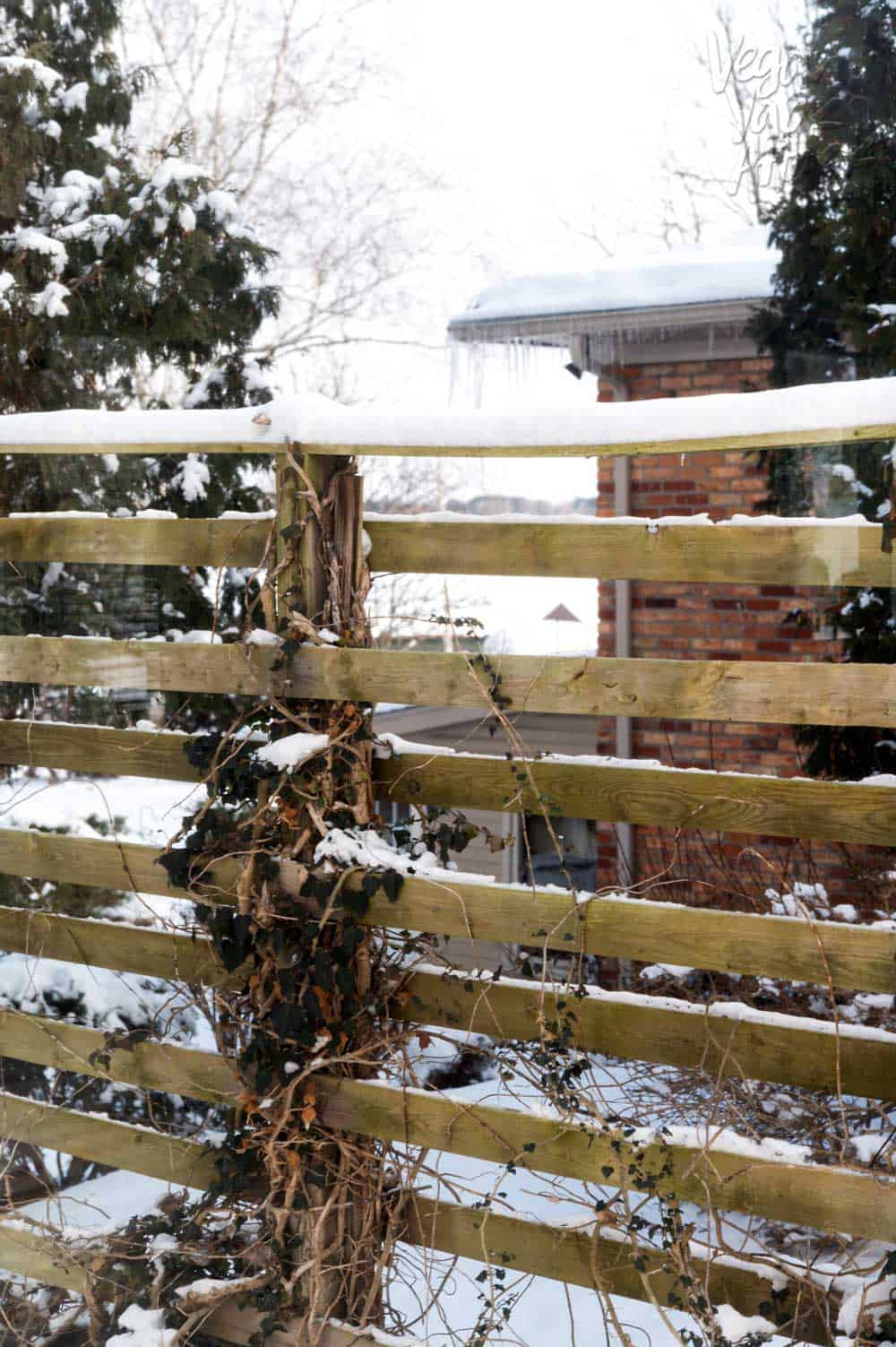 Image of wooden gate covered in snow, with house in the background